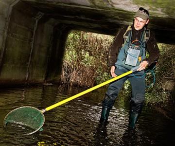 Elektrofischen: Fotoreportage im Wasser